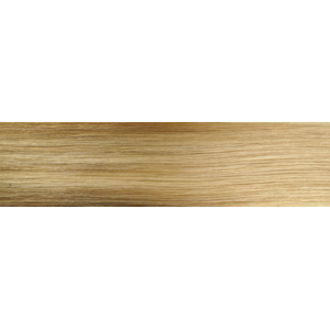 """Aqua Clip-in Hair Extensions: Straight, 20"""", Color #8/24 Balayage"""