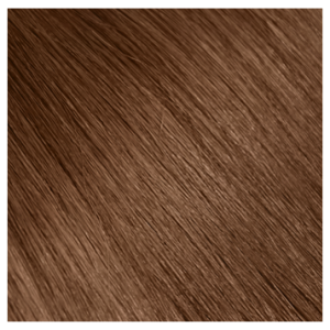"""Aqua Clip-in Hair Extensions: Straight, 20"""", Color #6 Light Brown"""